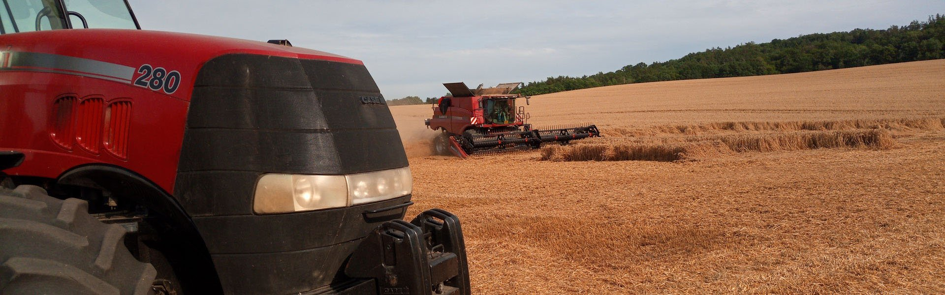 """FieldBee na polju: Zgodba češkega kmeta – """"Odloči se za!"""""""